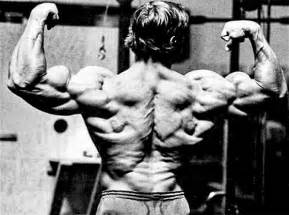 Arnold schwarzenegger s mammoth chest and back workout bodybuilding