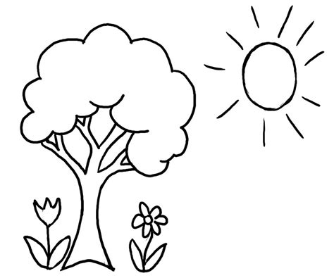 tree to color tree coloring pages printable coloring page for