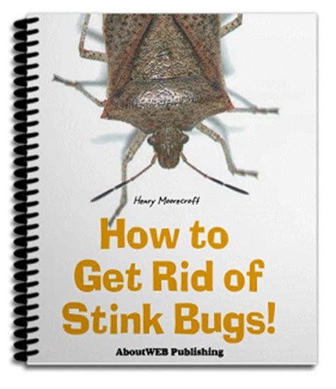 ways to get rid of pests in garden how to get rid of stink bugs 10 straightforward ways to