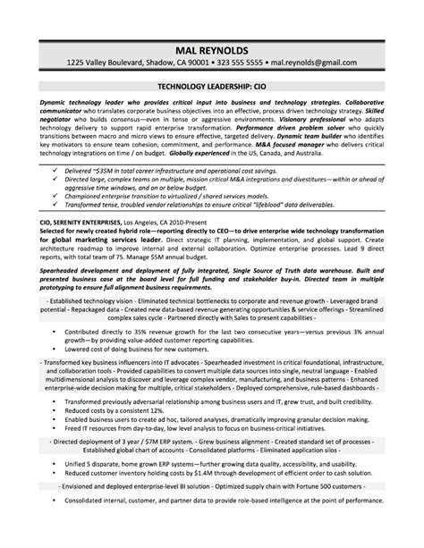sle of executive resume summary sle executive summary for sales resume danaya us