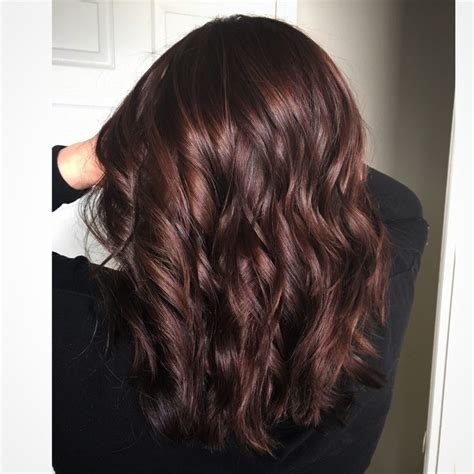 brown cherry hair color best 25 chocolate cherry hair ideas on pinterest black