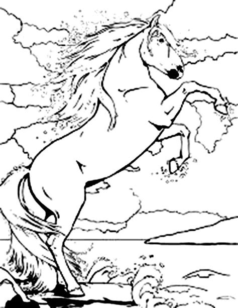 rearing horse coloring page decorated coloring pages