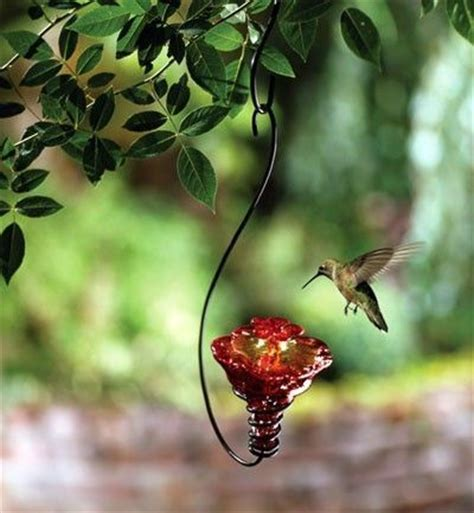 pretty hummingbird feeder birds juxtapost