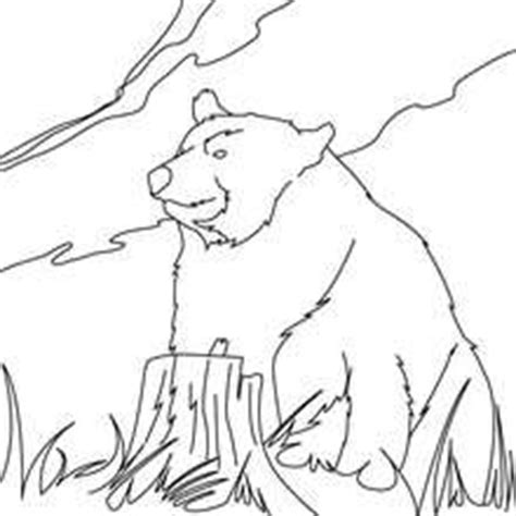 kodiak bear coloring page kodiak bear coloring pages realistic coloring pages
