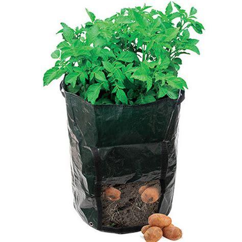 potato pot potatoes planting bag plant pots tomatoes vegetable