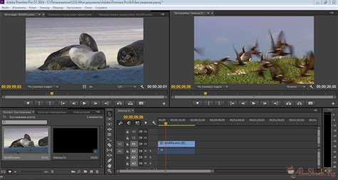 adobe premiere cs6 on windows 8 adobe premiere pro cs6 free download windows 8
