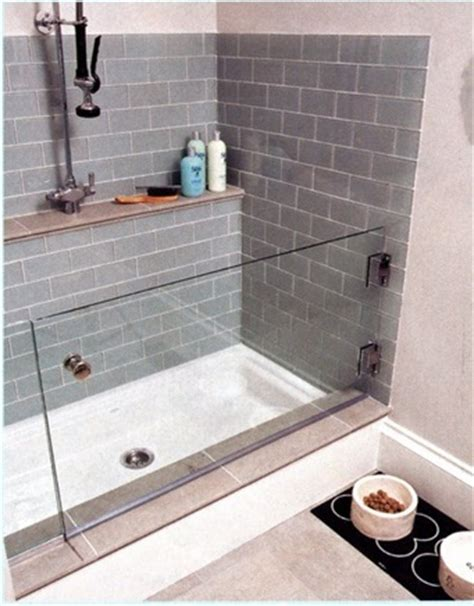 Water Everywhere But Shower by Indoor Washing Station Glass Door For When The