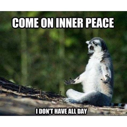 Inner Peace Meme - 1705 best yoga memes images on pinterest funny yoga