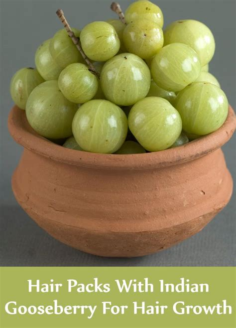 Amla Gooseberry For Hair by 5 Amazing Hair Packs With Indian Gooseberry For Hair