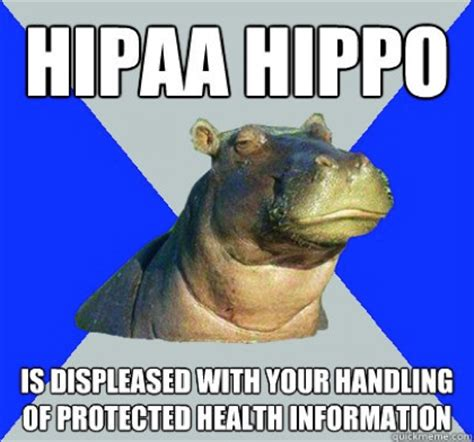 Skeptical Hippo Meme - hipaa hippo 1 ducks in a row hipaa for therapists