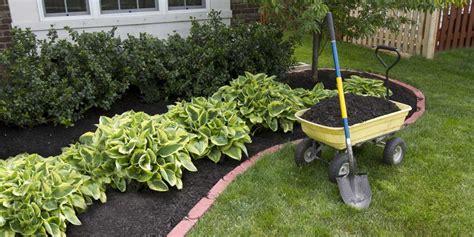 concime per giardino concimare il giardino come fare la casa in ordine