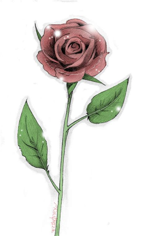 long stem rose tattoo designs stem by manden on deviantart