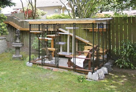 Kandang Kucing Well Cage the cat s meow animal sheltering by the humane