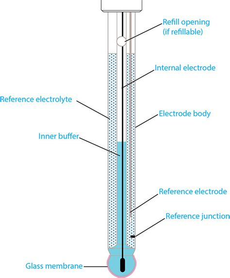 labelled diagram of ph meter anatomy of a ph electrode glass ph probes part 1 of 4