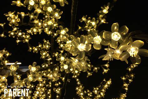 atlanta botanical gardens lights parking garden ftempo