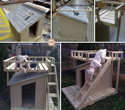dog house with deck every dog deserves a viewing deck the owner builder network