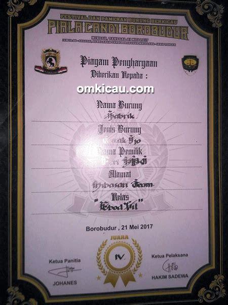 Setelan Winner 86 cucak ijo jabrik burung jawara dengan perawatan ilmu edan