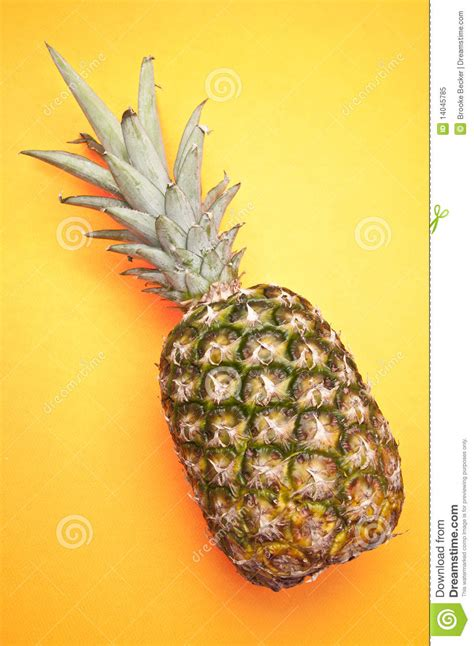 Yellow Pineapple L by Pineapple On Yellow Royalty Free Stock Photo Image 14045785