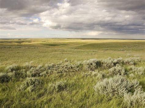 tiny plains the great plains places wwf