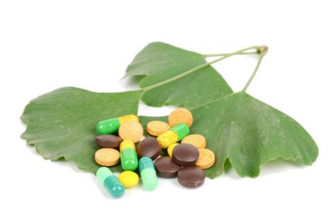 best ginkgo biloba supplements which brain supplements some essential ingredients part 1