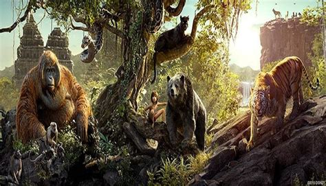 Kaos Animasi Jungle Book the jungle book ke hutan tanpa masuk hutan