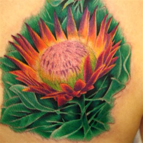 tattoo protea flower 70 best images about flower tattoo on pinterest