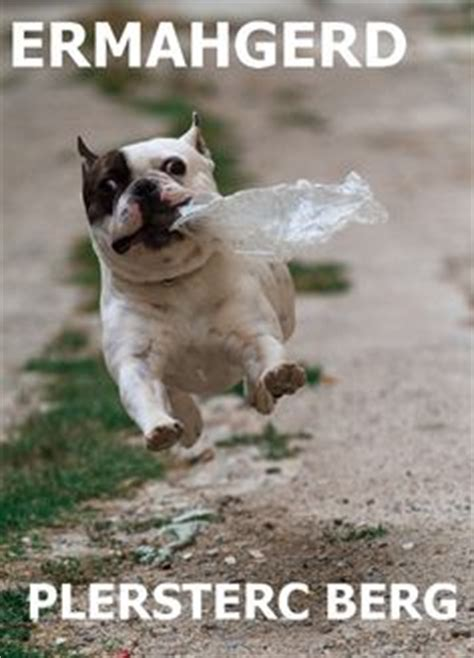 French Bulldog Meme - french bulldog memes image memes at relatably com