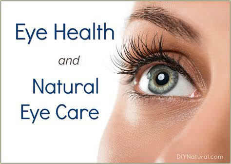 eye care eye health herbs and remedies to use for eye care
