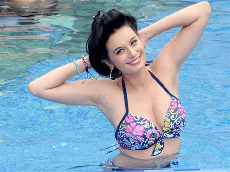 evelyn sharma film sultan starrer amit sadh to romance evelyn sharma in his