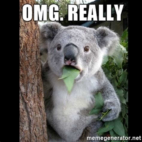 Omg Face Meme - omg really koala can t believe it meme generator
