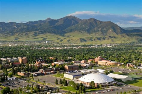 Of Montana Mba Tuition by Montana State Montana State Profile