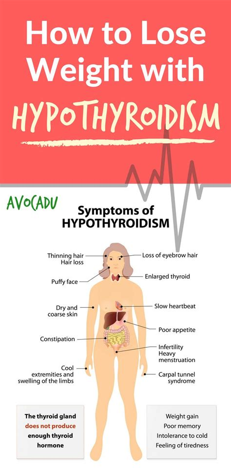 Detox Your Thyroid And Lose Weight by How To Lose Weight With Hypothyroidism