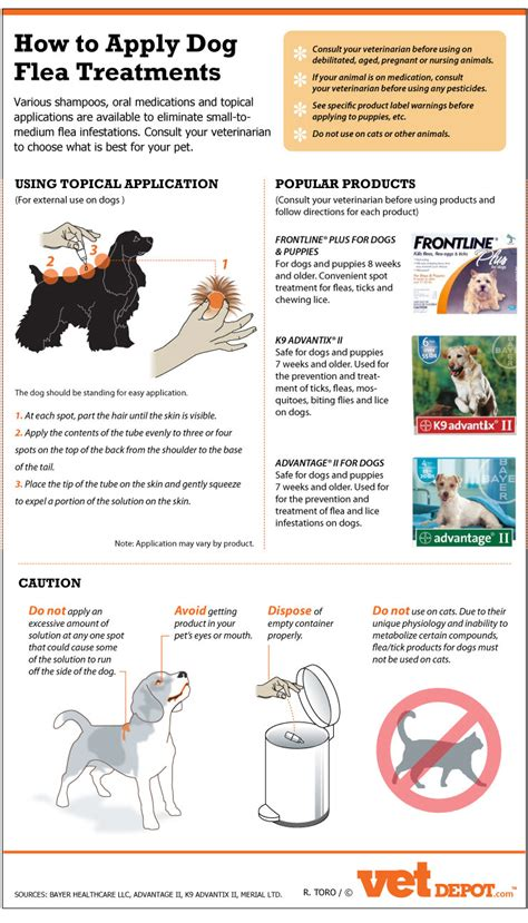best topical flea treatment for dogs how to apply flea treatments food infographics