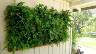 Vertical Gardens Plants On Walls Vertical Garden Systems May 2012