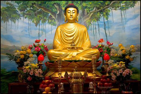 siddhartha gautama buddha   search