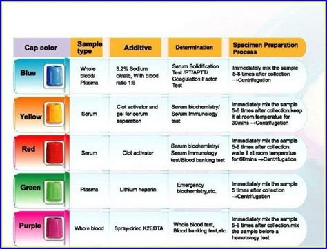 blood collection color guide blood draw colors findingloveblog phlebotomy