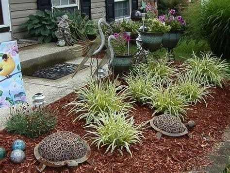 landscape   front yard  love  spider plants