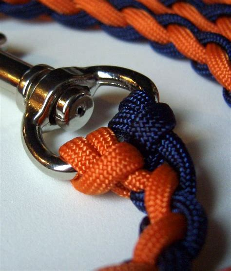 when to start leash a puppy braiding paracord leash how to myideasbedroom