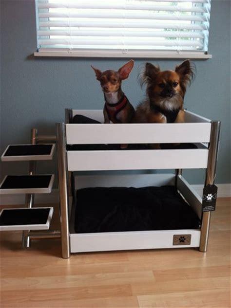 where can i buy a bed amazon com lazybonezz metropolitan pet bunk bed ebony lazybonezz loft bed pet supplies