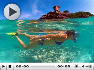 Black Side Table Diving In Similan Islands Thailand