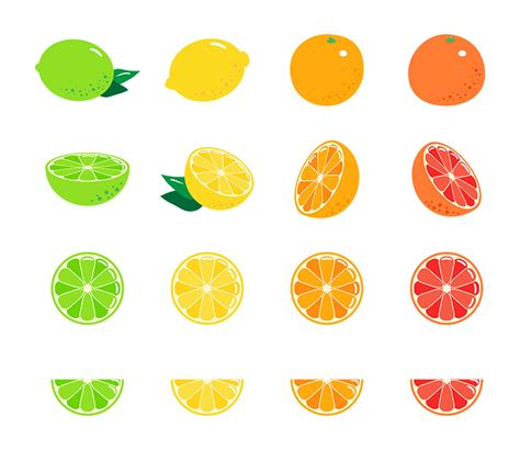 fruit clipart 16 citrus fruits fruit clipart citrus clipart lemon