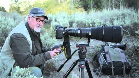 photographing  moose   grand tetons  tom