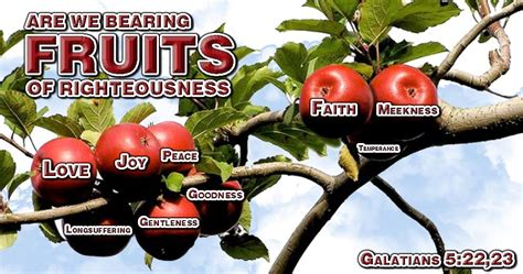 7 fruits in the bible are we bearing fruits of righteousness biblical proof