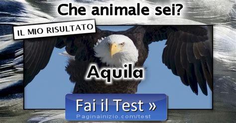 test animale sei risultato test animale sei aquila