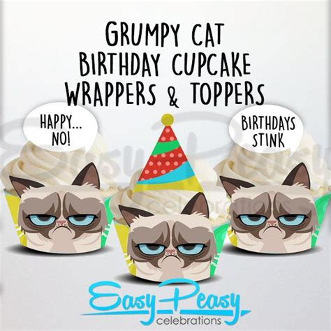 grumpy cat party ideas one charming party birthday the 25 best grumpy cat birthday ideas on pinterest