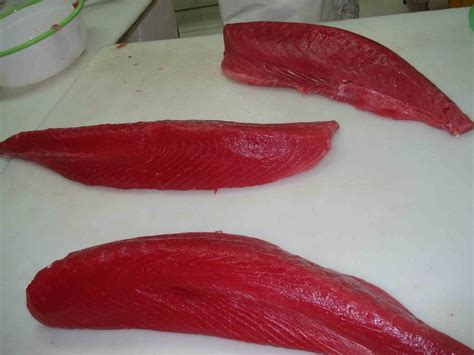 Tuna Loin Sashimi Grade tuna loin sashimi or co treatment products