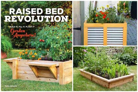 best wood for raised beds best wood to use for raised garden beds empress of dirt