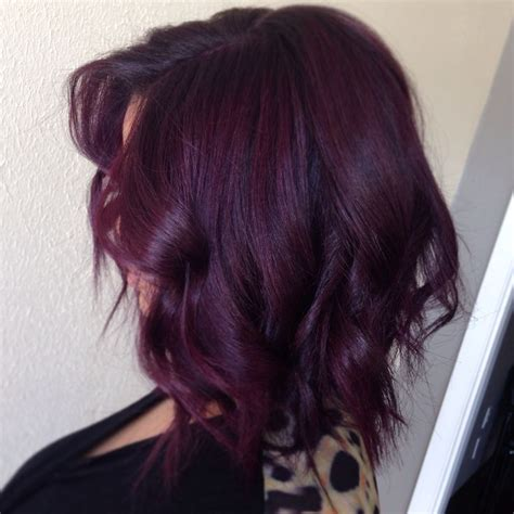 black plum hair color 25 best ideas about violet hair on