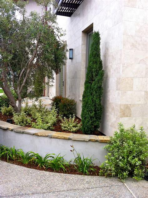 contemporary la jolla landscape architecture courtyard pool italian cypress