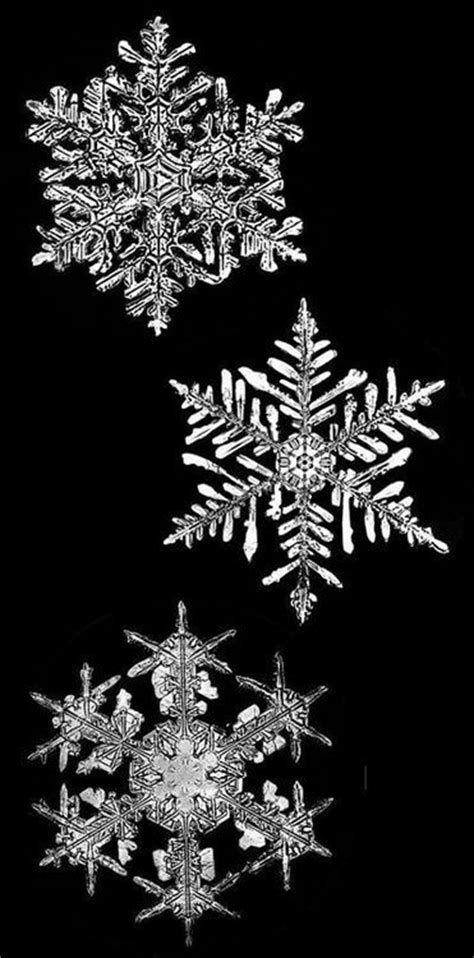 snowflake patterns real best 25 snow flakes ideas on pinterest paper snowflake